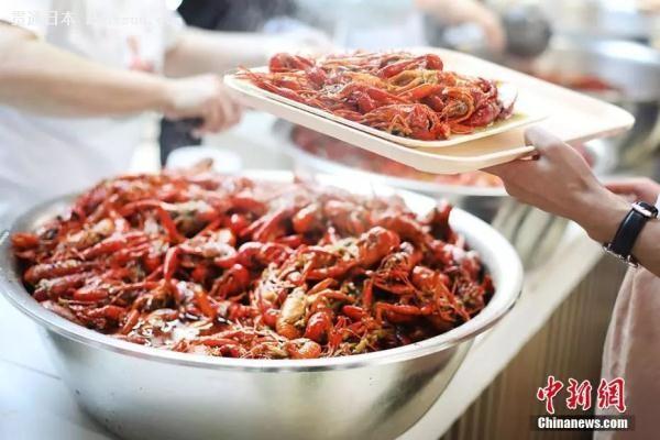 北海道小龙虾泛滥,日本人也开始吃麻小啦~
